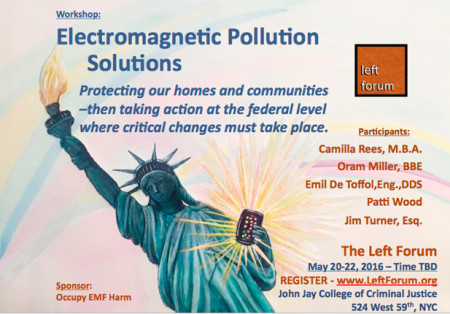 Electromagnetic Pollution Solutions Flyer